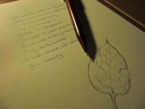 Tumblr_l10ganaccy1qanggpo1_1280